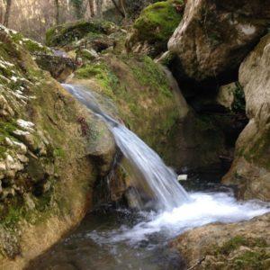 immagine ruscello Monumento Naturale Valle delle Cannuccete