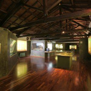 Interno Museo Civico Naturalistico Capranica Prenestina