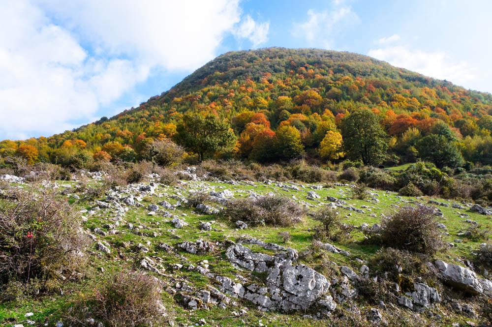 immagine_parco-naturale-regionale-monti-lucretili_aree-naturali-protette