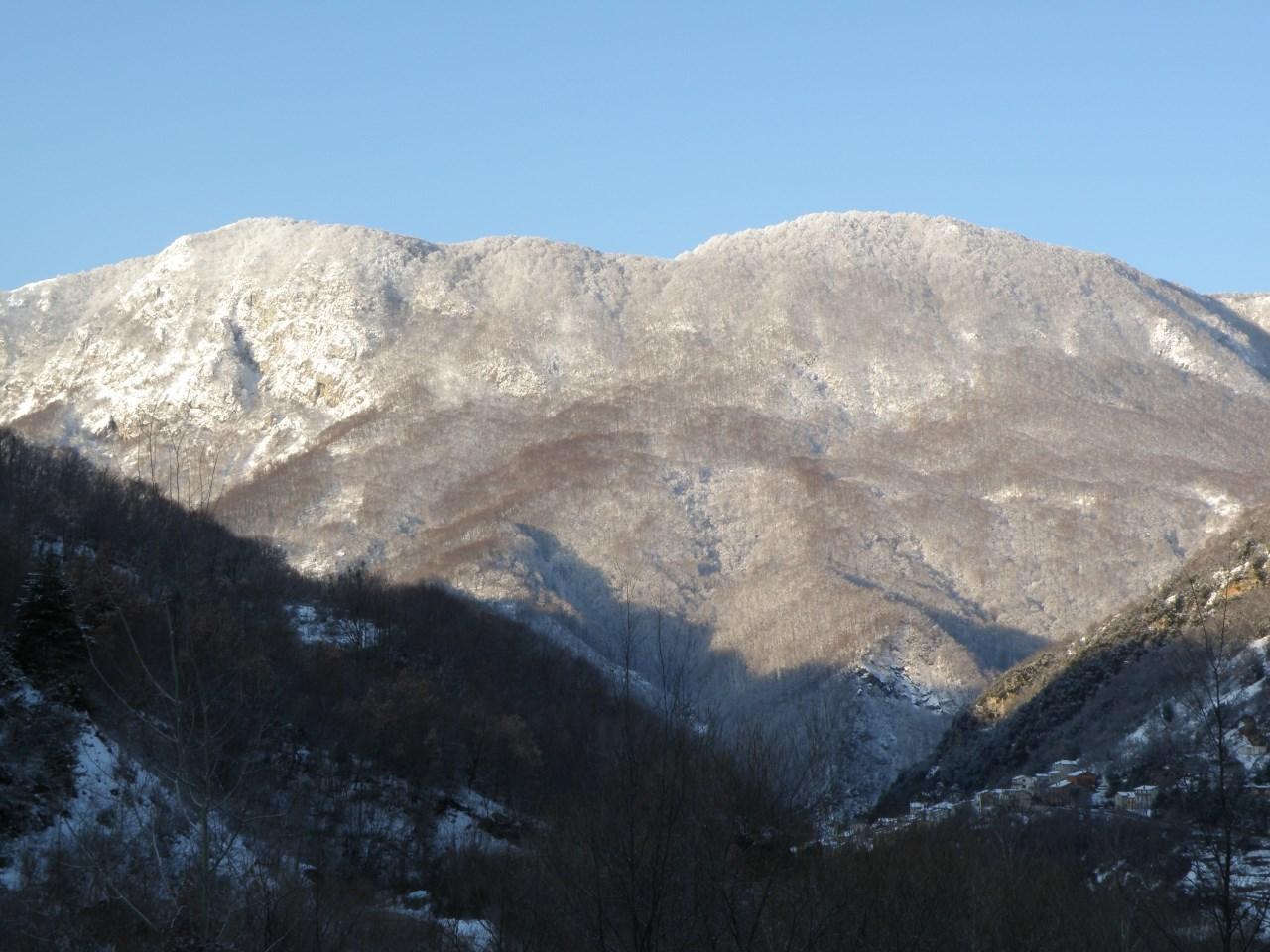 immagine_riserva-naturale-monti-navegna-e-cervia_aree-naturali-protette