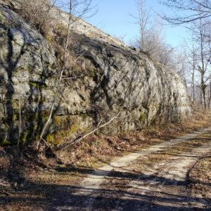 Marcetelli_Ospanesco_02-marzo-17 (64)