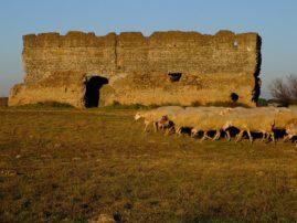 Parco dell'Appia Antica PH: L. Battaglia