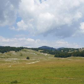Camposecco Parco Regionale dei Monti Simbruini PH_M_Branchi