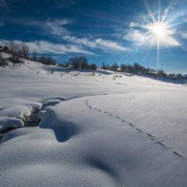 Campotosto Parco Nazionale del Gran Sasso e Monti della Laga