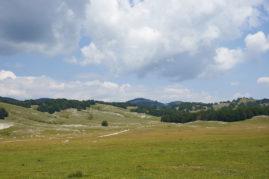 Camposecco, Parco Naturale Regionale dei Monti Simbruini PH: M. Branchi