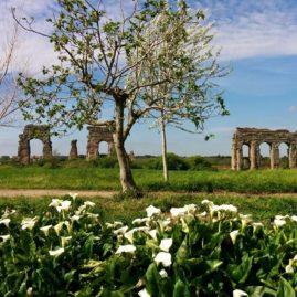 Parco_Appia_Antica_Acquedotti
