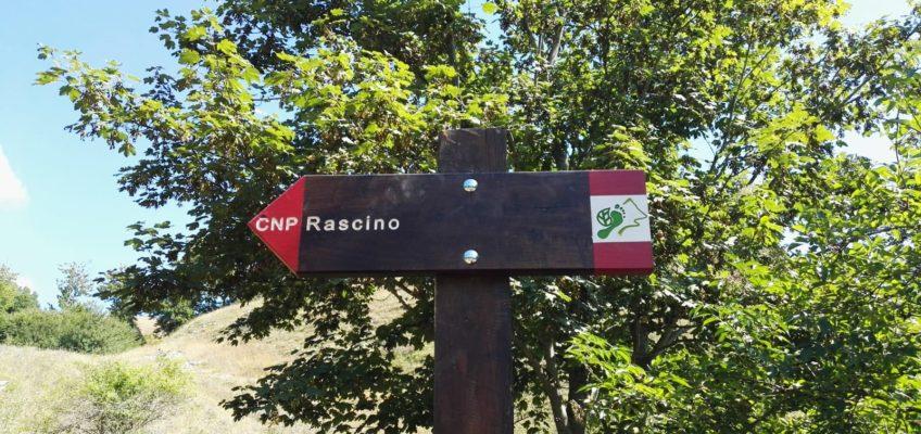 Si lavora sulla Tappa 15. Castiglione – Rascino; si cammina sulla Tappa 5. Guadagnolo – Subiaco
